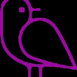 TCG Hummingbird-SEC