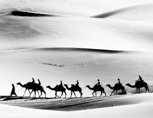 TCG Newsletter 2021 March-Travelers in Desert